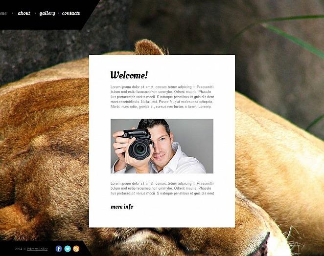 Plantilla Para Galería De Fotos #48690 para Sitio de Portafolio de fotógrafo New Screenshots BIG