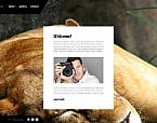 Art & Photography Photo Gallery  Template 48690