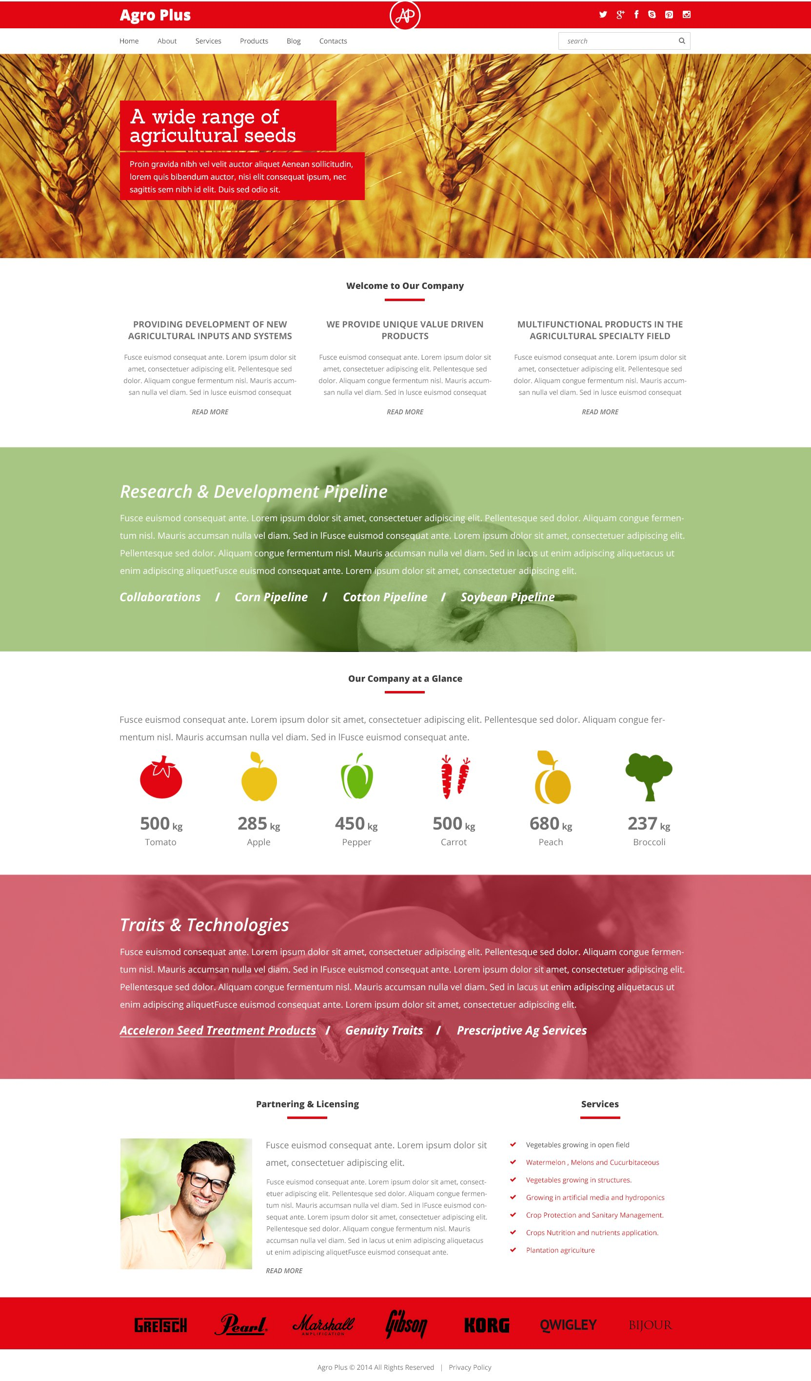 Thème WordPress adaptatif pour site agricole #48675