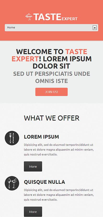 WordPress Theme/Template 48840 Main Page Screenshot
