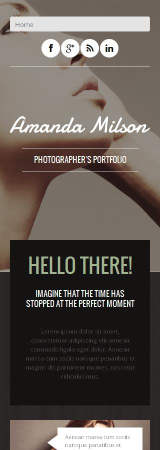 WordPress Theme/Template 48843 Main Page Screenshot