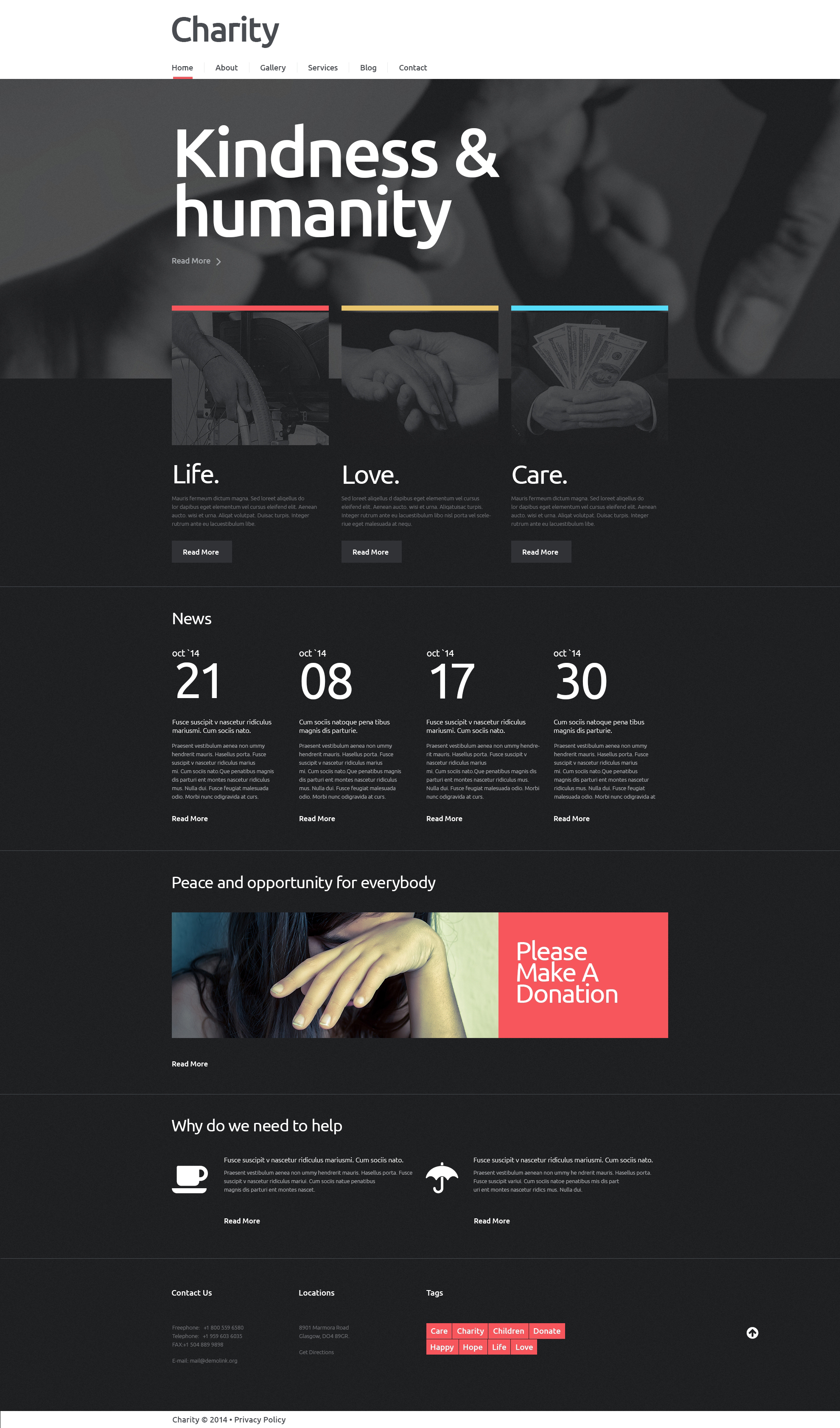 NGO Responsive WordPress Theme