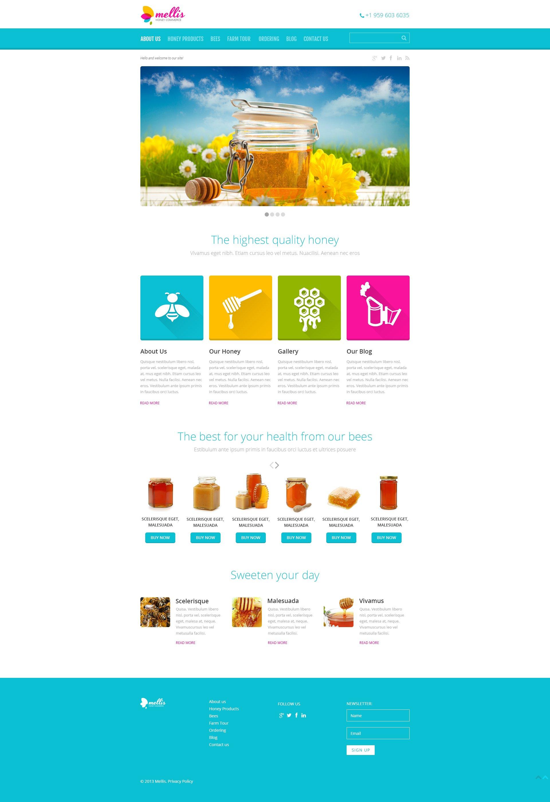 Адаптивний WordPress шаблон на тему їжа №48927