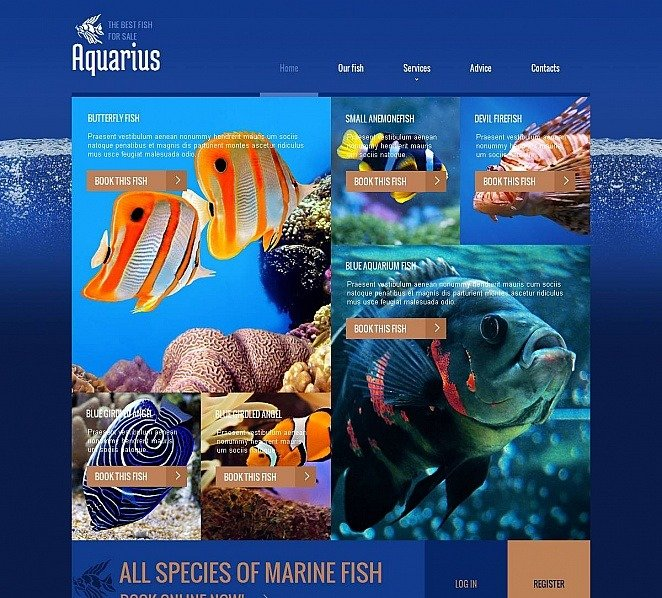 Plantilla Moto CMS HTML #49040 para Sitio de Peces New Screenshots BIG