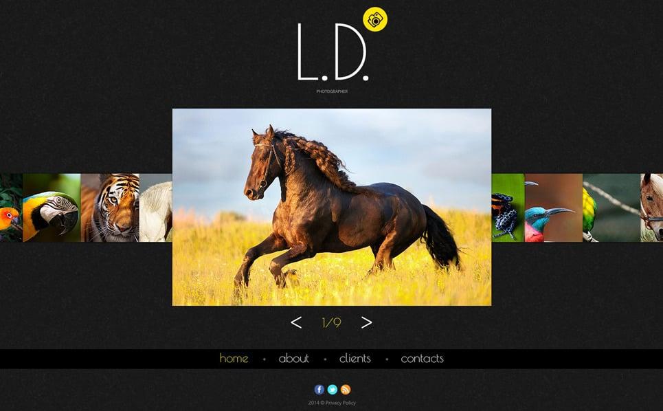 Modèle Web Bootstrap  pour portfolio de photographe New Screenshots BIG