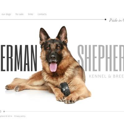 Moto CMS HTML Vorlage für Hunde