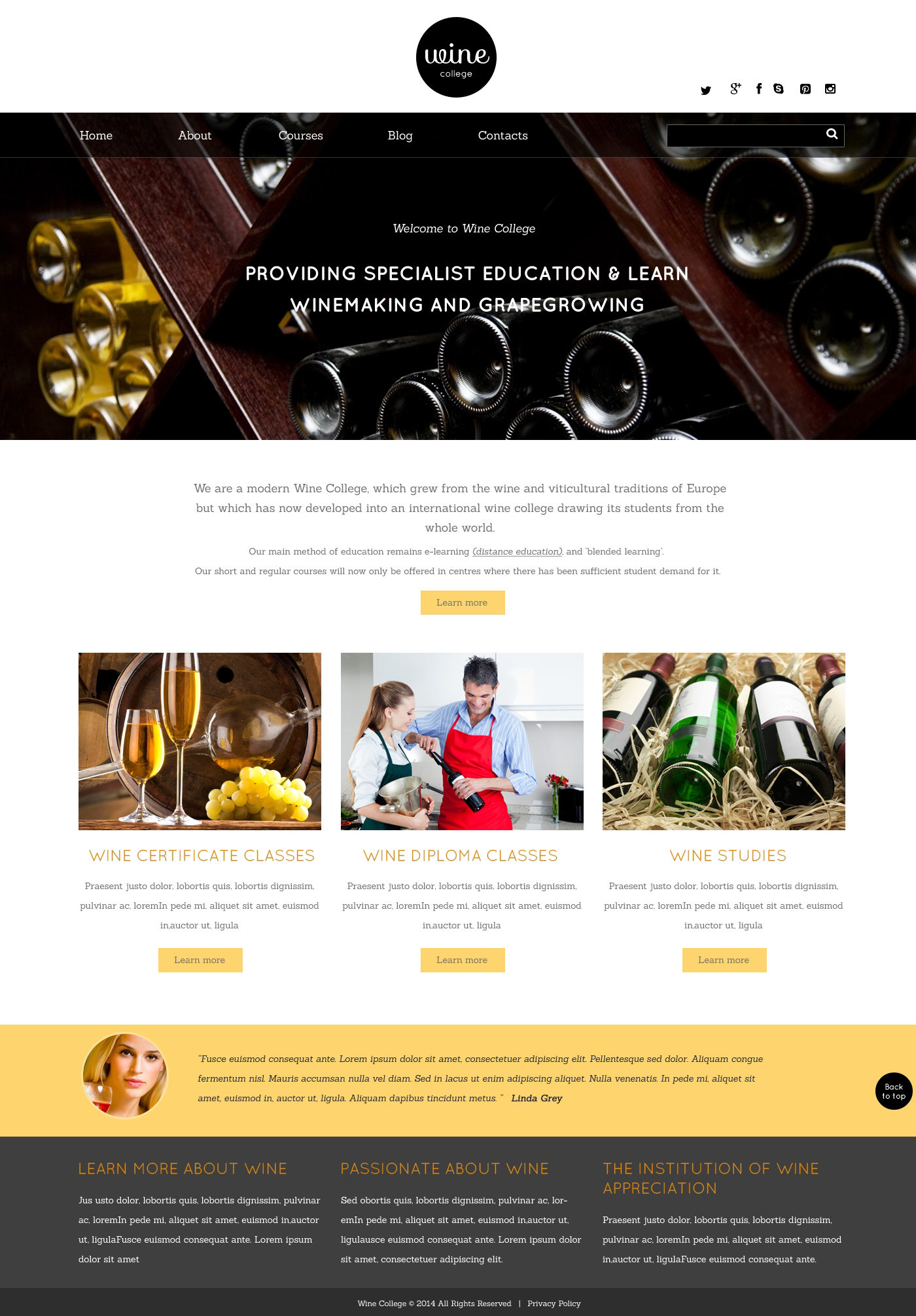 Plantilla Web Responsive para Sitio de Vino #49020