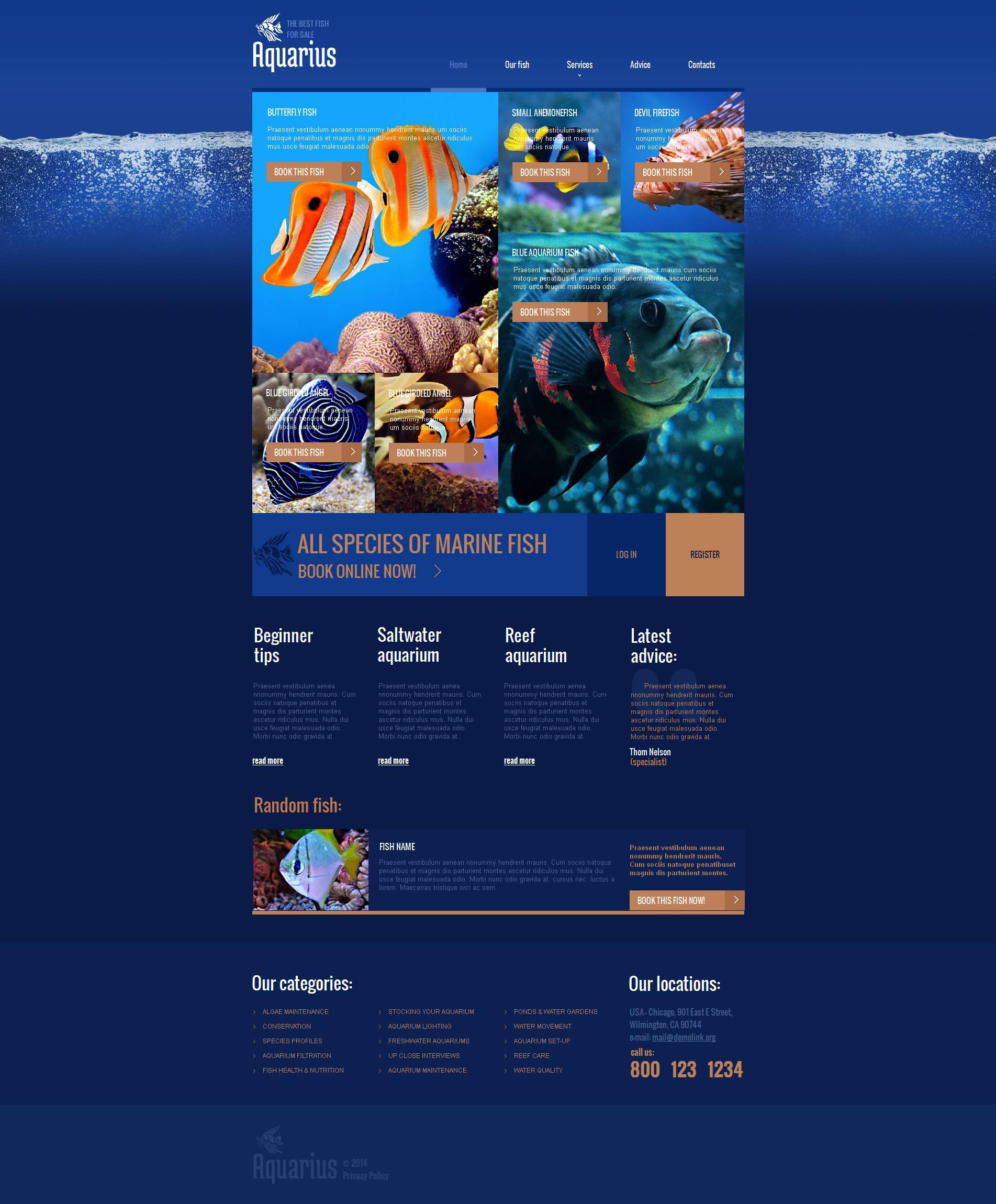 Szablon Moto CMS HTML #49040 na temat: ryby