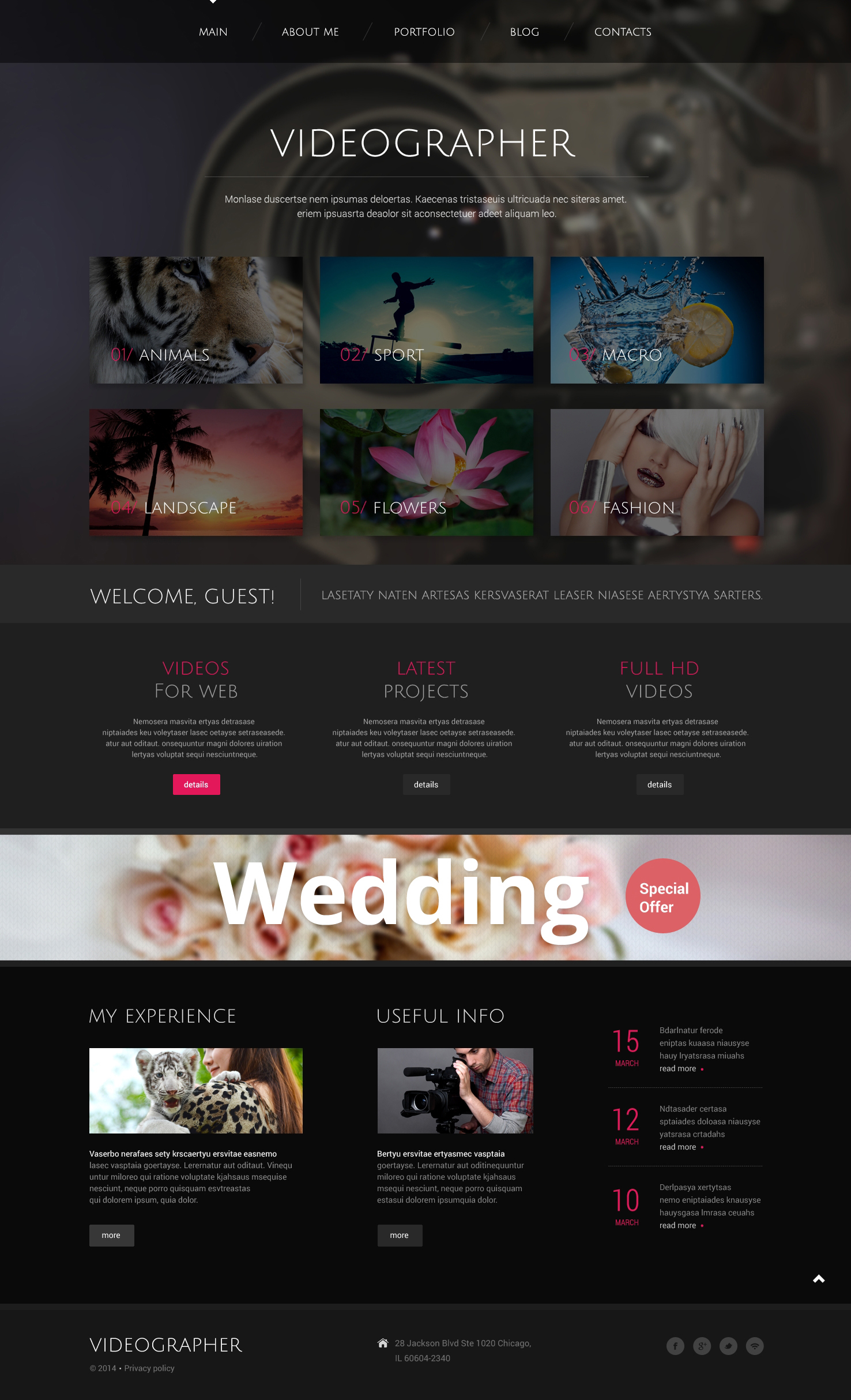Tema WordPress Flexível para Sites de Galeria de Vídeos №49004