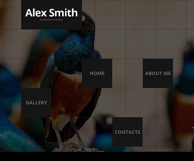 Szablon Galerii Zdjęć #49125 na temat: portfolio fotograficzne New Screenshots BIG
