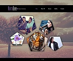 Art & Photography Photo Gallery  Template 49128