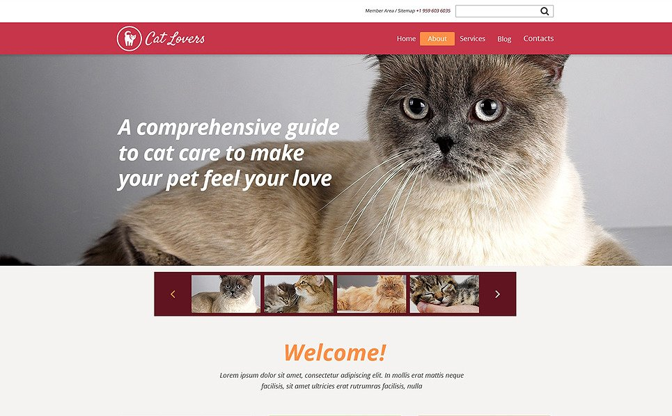 Responsive Website template over Katten New Screenshots BIG