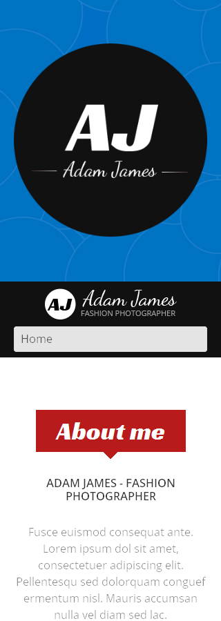 WordPress Theme/Template 49155 Main Page Screenshot