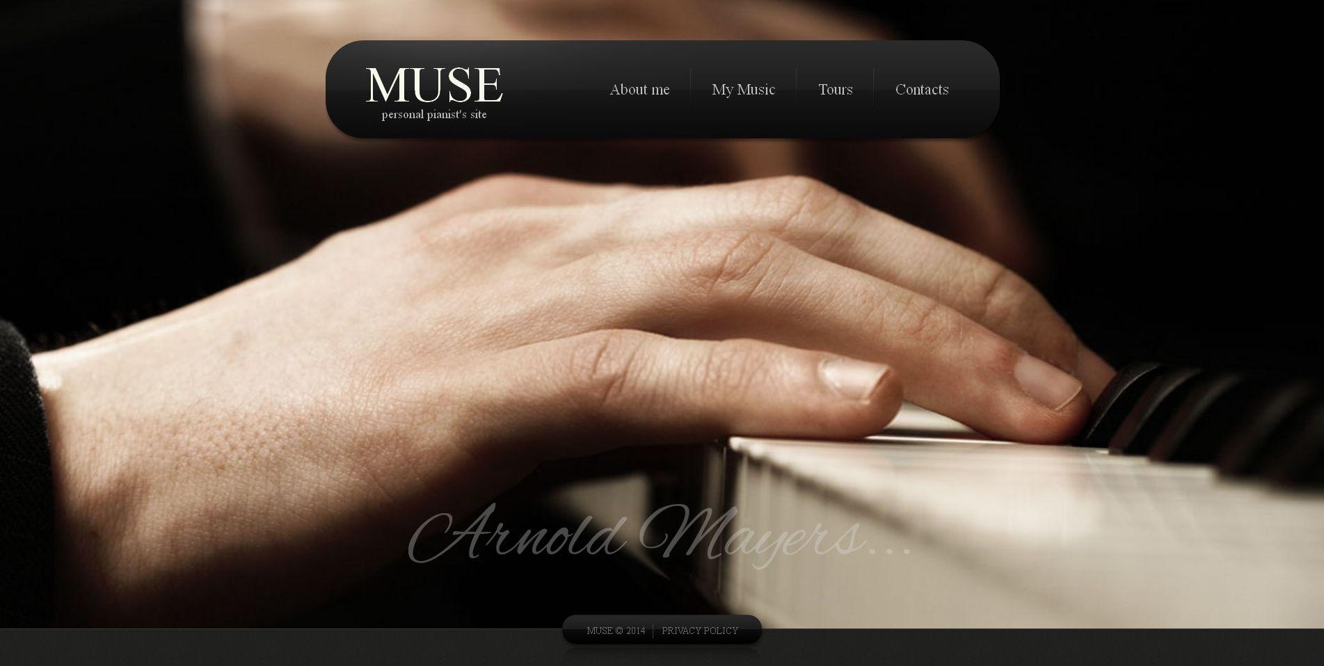 Modèle Moto CMS HTML Premium pour site de chanteur #49177