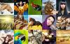 Website Vorlage für Fotografen Portfolio  New Screenshots BIG