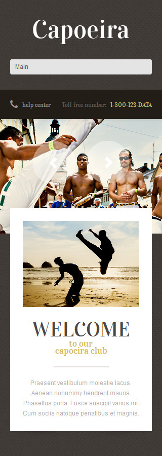 WordPress Theme/Template 49225 Main Page Screenshot