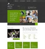 Website  Template 49239