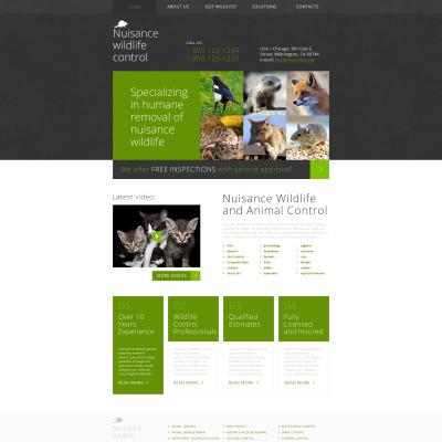 pest control website templates. Black Bedroom Furniture Sets. Home Design Ideas