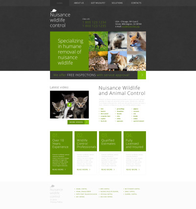 Flexível template Web №49239 para Sites de Controle de Pragas