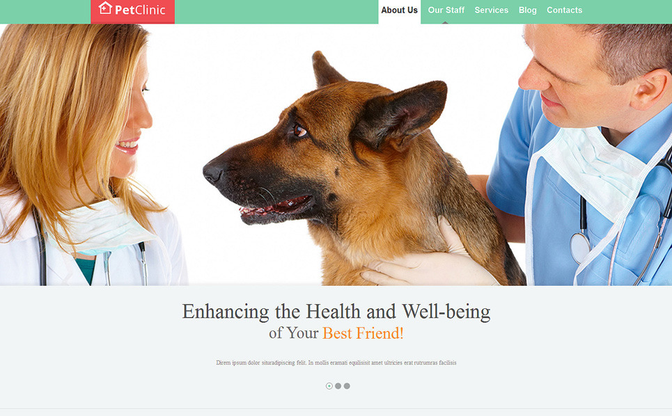 Reszponzív Állatorvosok Weboldal sablon New Screenshots BIG
