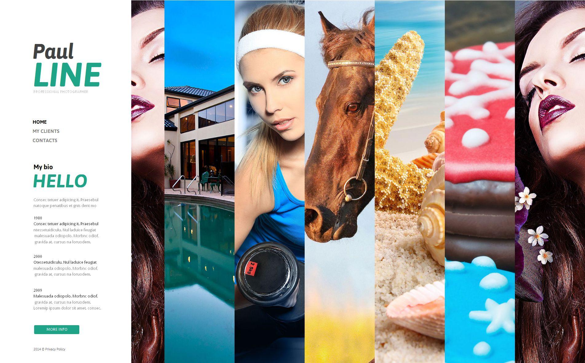 Modèle De Galerie Photo Premium pour portfolio de photographe #49347 - screenshot