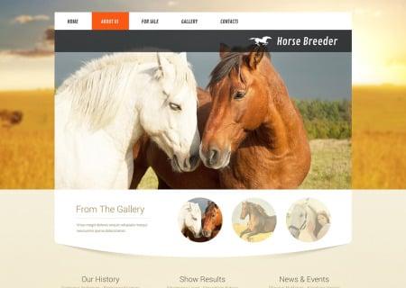 Horse Responsive
