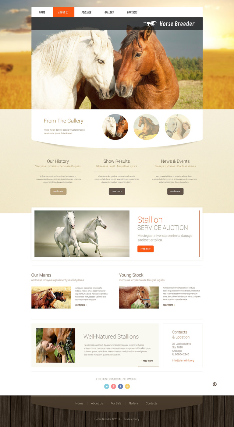 Horse Responsive Website Template New Screenshots BIG
