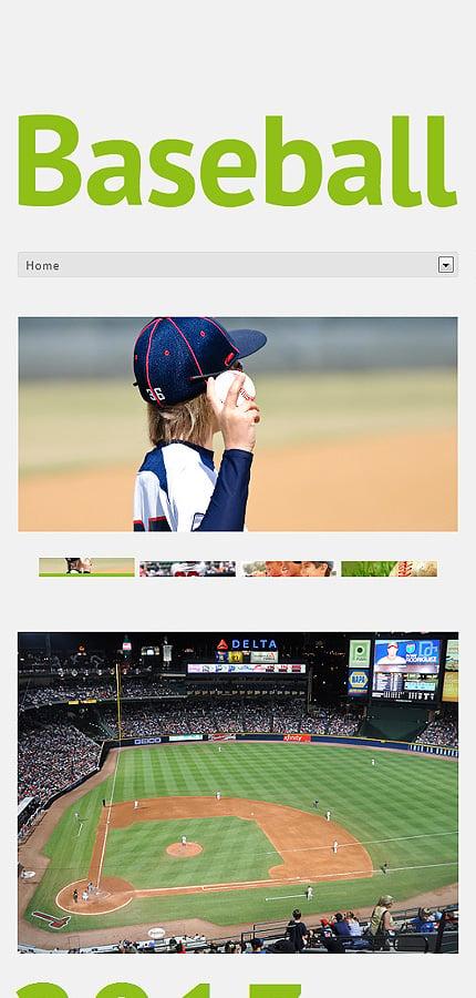 WordPress Theme/Template 49511 Main Page Screenshot