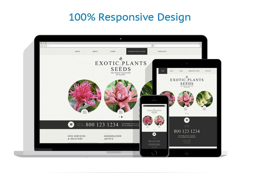Exterior design website template 49564 for Exterior design website templates