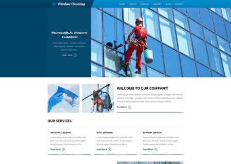 Window Cleaning Responsive