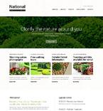 Website  Template 49666