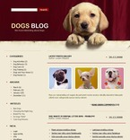 Animals & Pets PSD  Template 49696