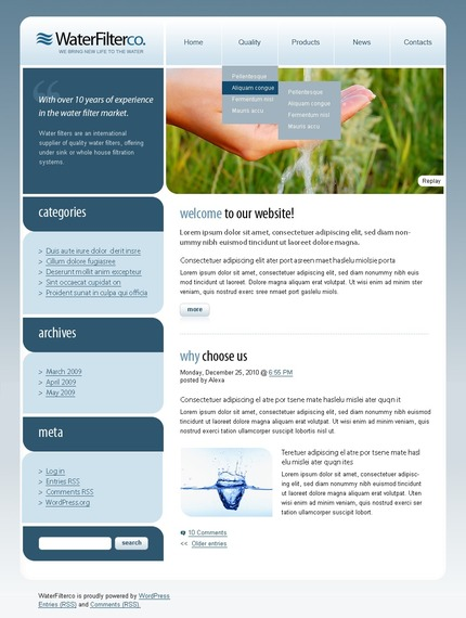 ADOBE Photoshop Template 49986 Home Page Screenshot