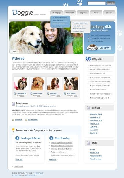 PSD макет сайта №49989