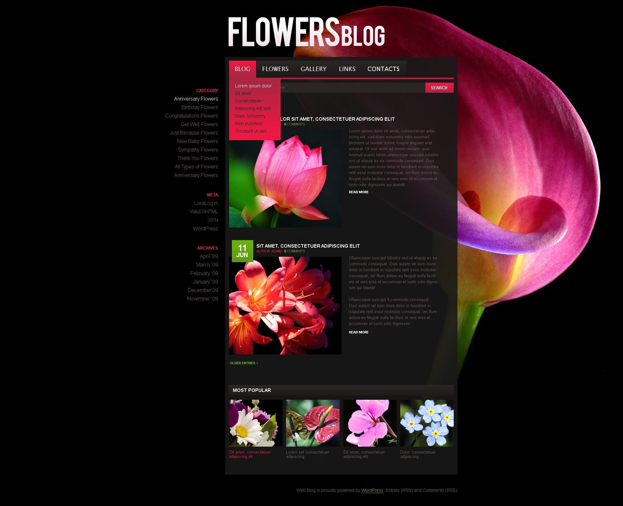PSD šablona Květiny #49995
