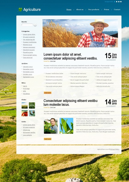 ADOBE Photoshop Template 50064 Home Page Screenshot