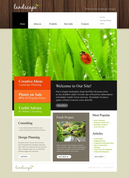 ADOBE Photoshop Template 50092 Home Page Screenshot