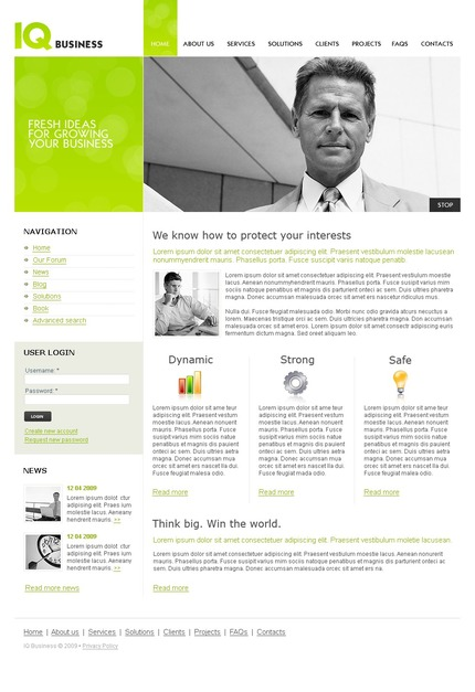 ADOBE Photoshop Template 50195 Home Page Screenshot