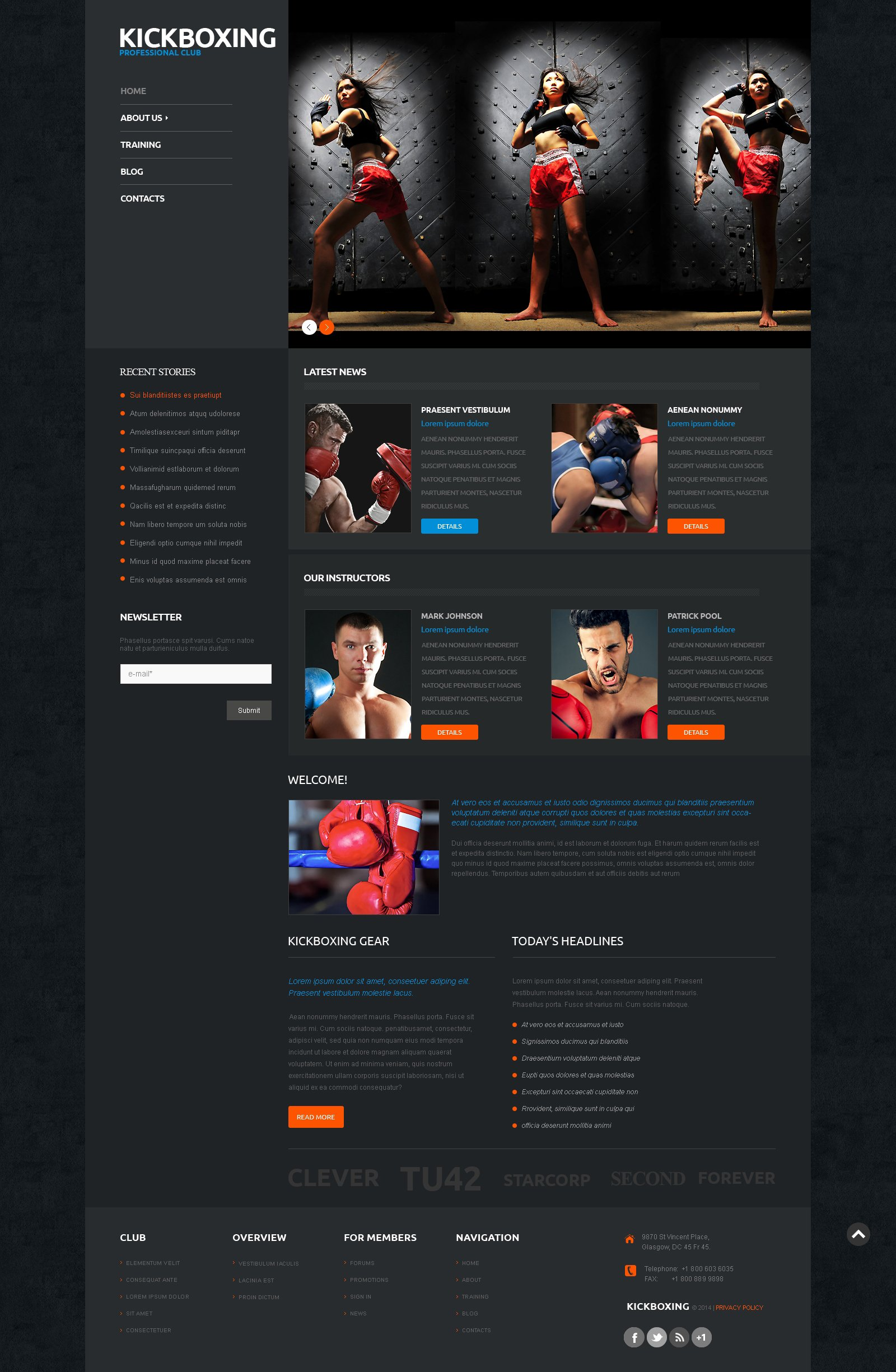 Responsives WordPress Theme für Boxing #50122