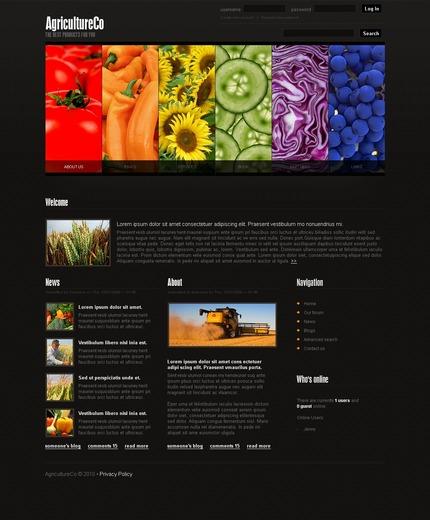 PSD макет сайта №50234