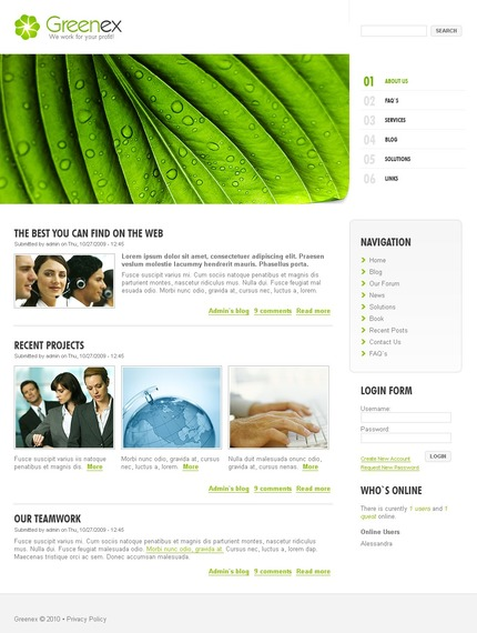 ADOBE Photoshop Template 50241 Home Page Screenshot