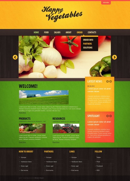 ADOBE Photoshop Template 50375 Home Page Screenshot
