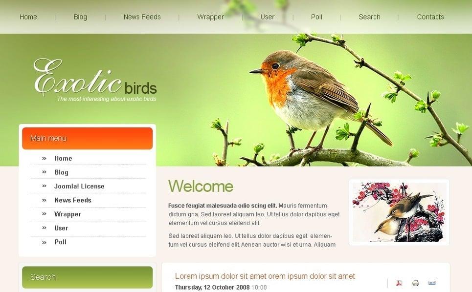 Template Photoshop  para Sites de Pássaros №50421 New Screenshots BIG