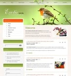 Animals & Pets PSD  Template 50421