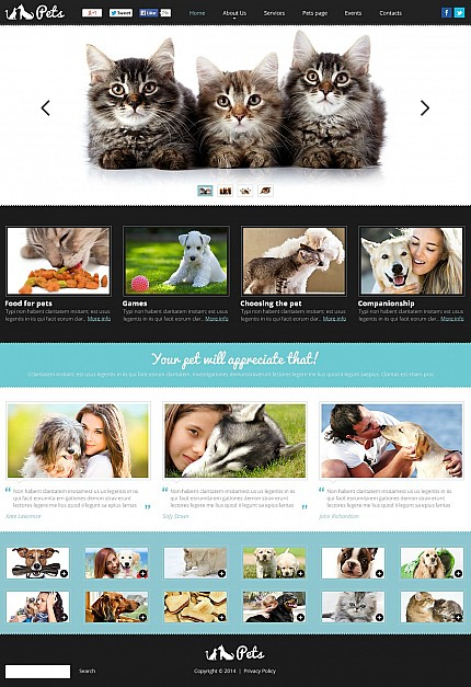 ADOBE Photoshop Template 50467 Home Page Screenshot