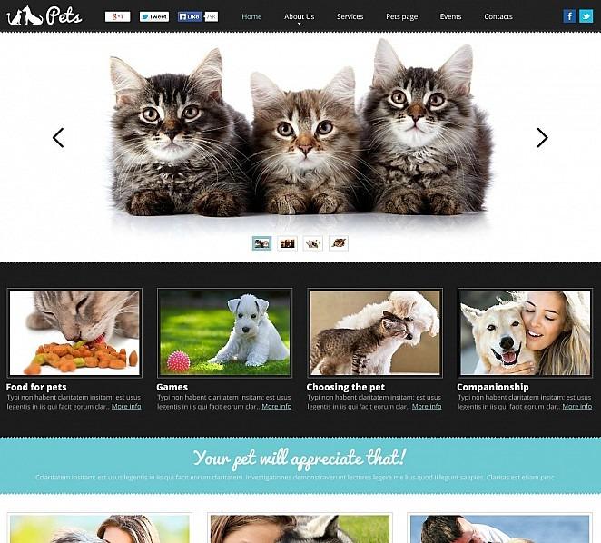 Flash CMS Vorlage für Tiere und Haustiere New Screenshots BIG