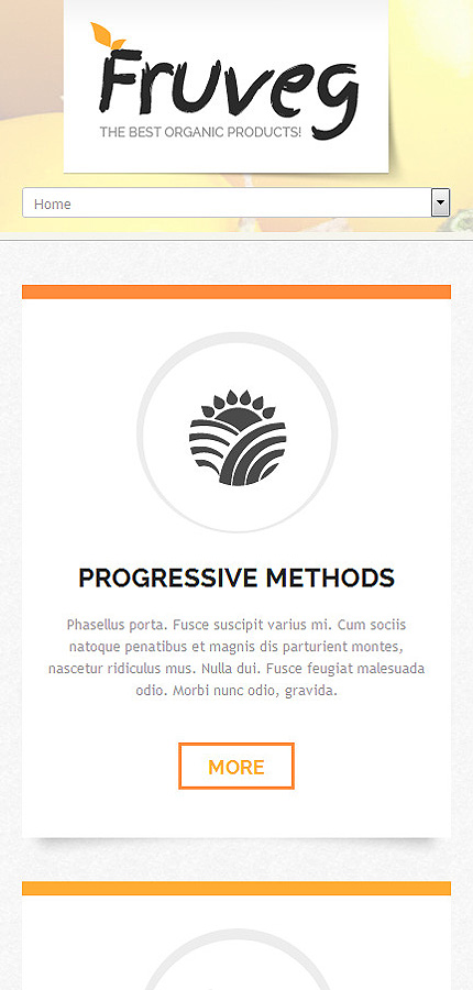 Joomla Theme/Template 50489 Main Page Screenshot