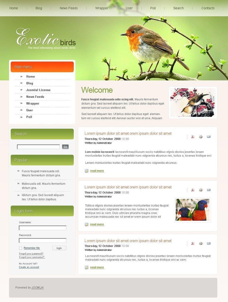 Birds PSD Template New Screenshots BIG