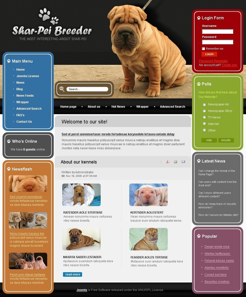 Dog PSD Template New Screenshots BIG