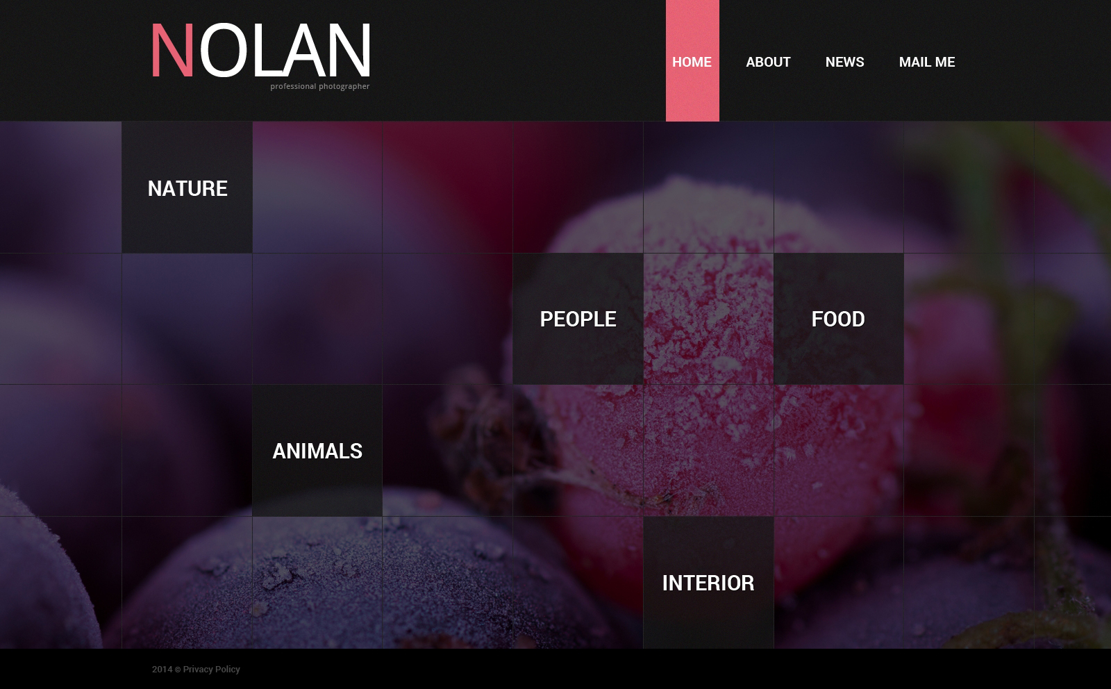 photographer portfolio website template